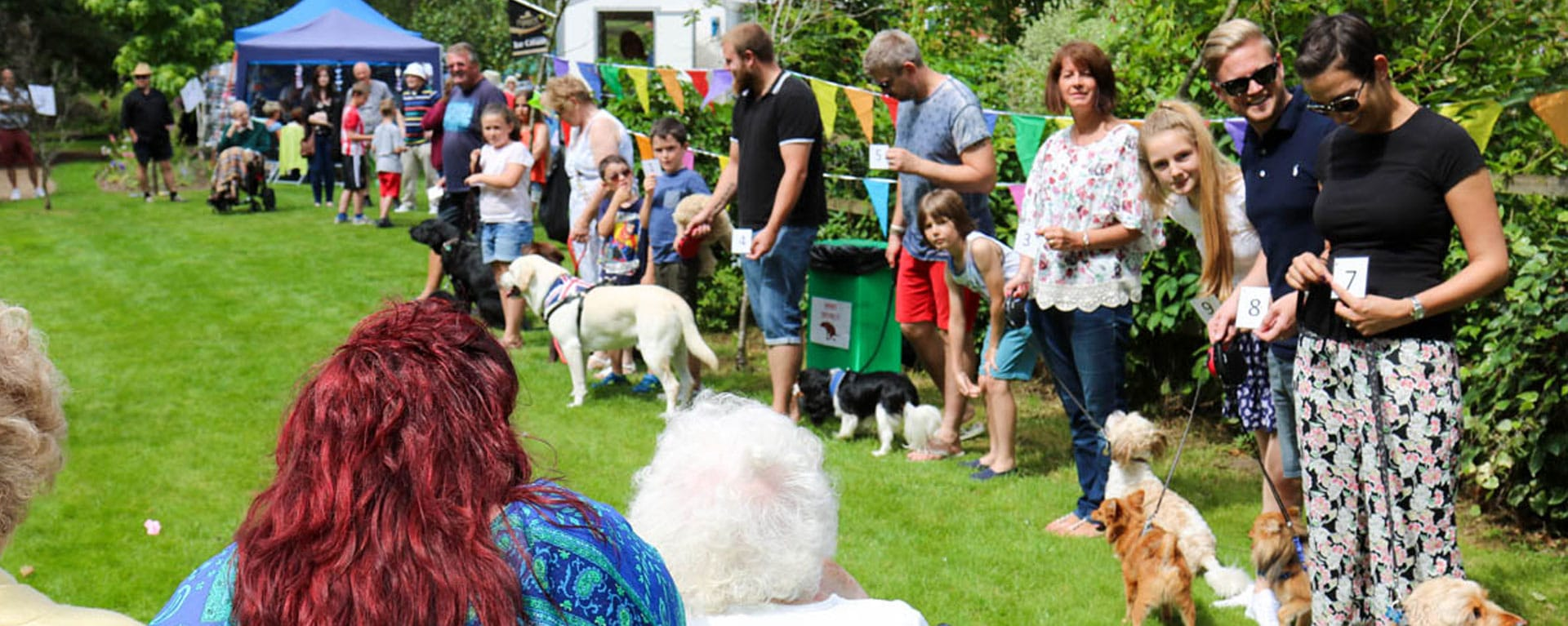 Southampton dogs home with all their dogs at Laurel Care Home Summer fete